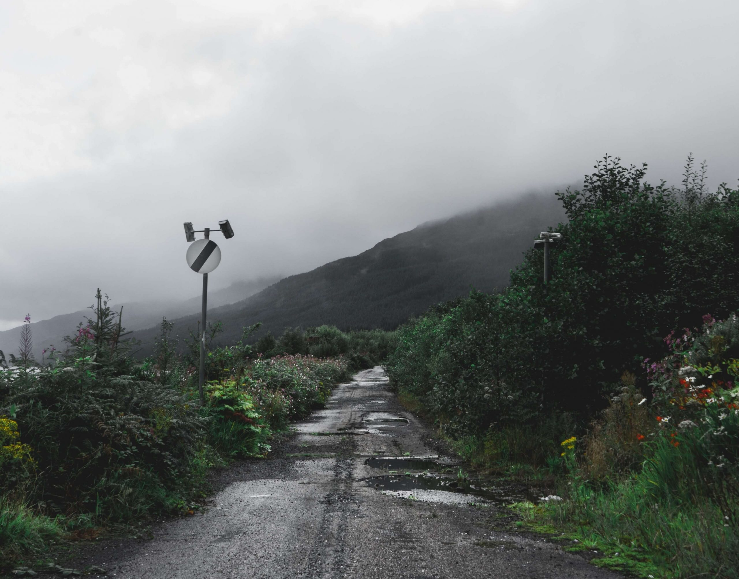 Road network irregularities detection